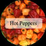 peppershot