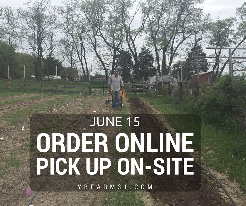 ORDER ONLINE X PICK UP ON-SITE